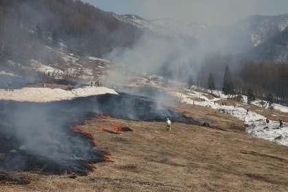 2009年04月18日野焼き画像