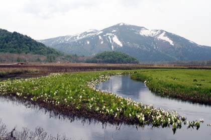 2009年6月3日尾瀬ヶ原から至仏山を撮影