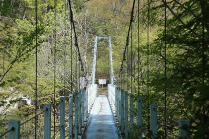 須田貝ダム下の堤防付近の吊り橋