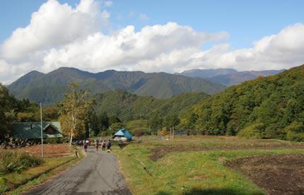 2007秋撮影 散歩コース