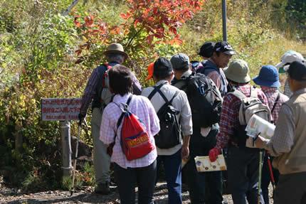 2008年秋の健康ハイキング会